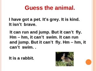 Guess the animal. I have got a pet. It's grey. It is kind. It isn't brave. It