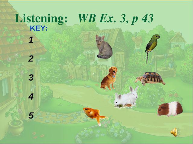. Listening: WB Ex. 3, p 43 KEY: 1 2 3 4 5 1 2 3 4 5