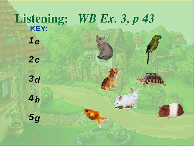 . Listening: WB Ex. 3, p 43 KEY: e c d b g 1 2 3 4 5 1 2 3 4 5
