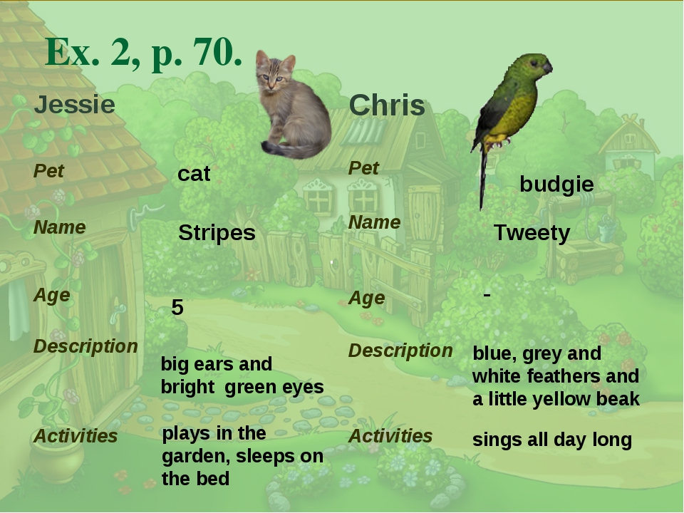 . Ex. 2, p. 70. cat Stripes big ears and bright green eyes 5 plays in the gar...