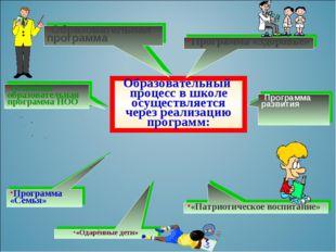 Образовательный процесс в школе осуществляется через реализацию программ: «Па