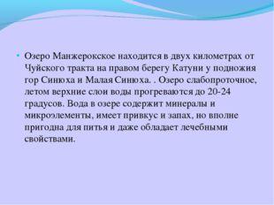 Озеро Манжерокское находится в двух километрах от Чуйского тракта на правом б
