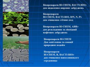Біопрепарати BI-CHEM,BACTI-BIO,D/N, N, P> для очищення стічних вод Біопрепа