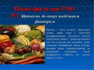 Цікаві факти про ГМО №1 Здатність до опору шкідливим факторам Фрукти і овочі