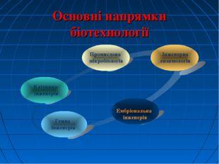 Основні напрямки біотехнології Генна інженерія