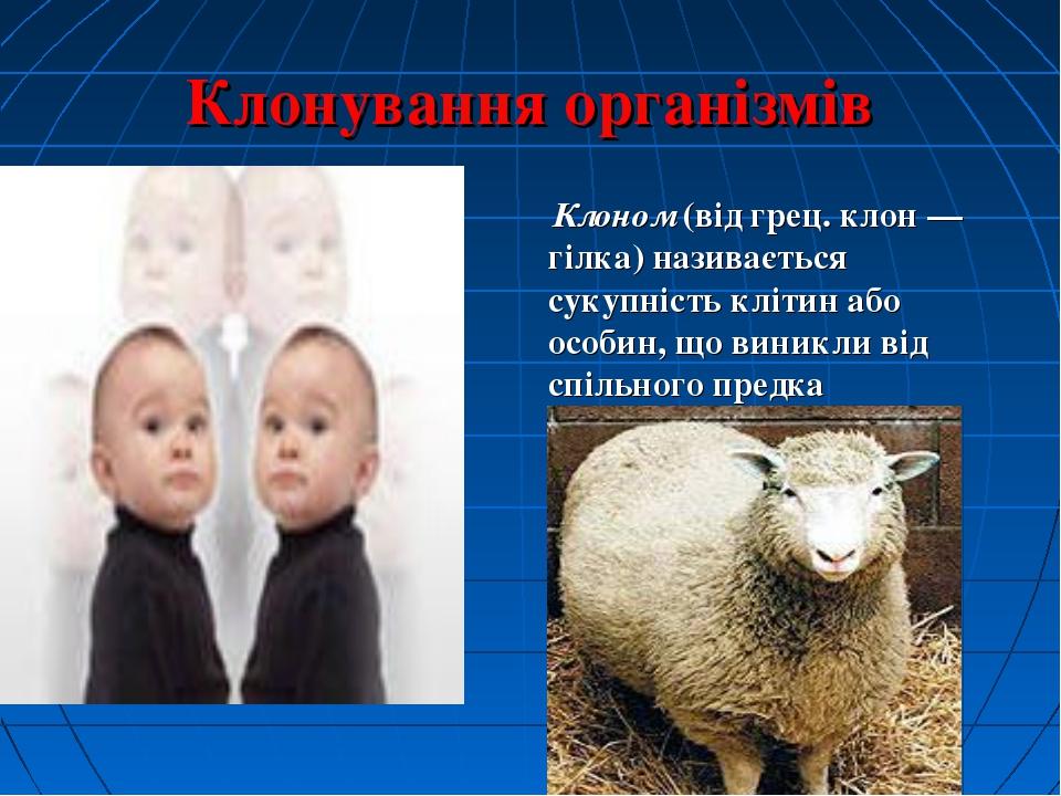 Клонування організмів Клоном (від грец. клон — гілка) називається сукупність...