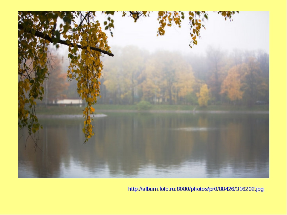 http://album.foto.ru:8080/photos/pr0/88426/316202.jpg