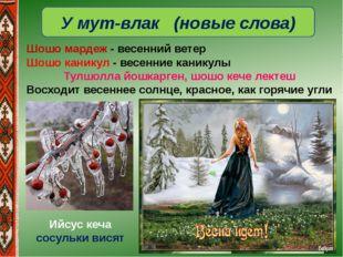 У мут-влак (новые слова) Шошо мардеж- весенний ветер Шошо каникул- весенние