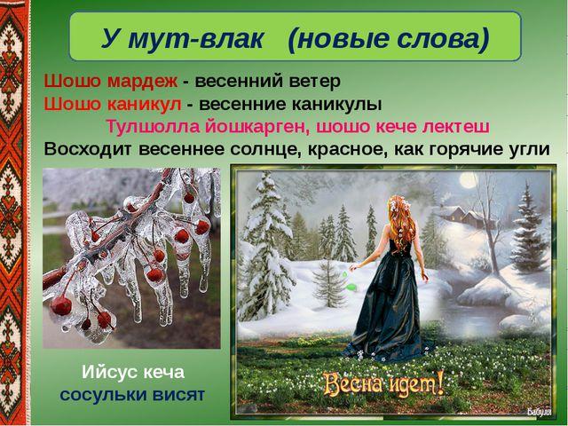 У мут-влак (новые слова) Шошо мардеж- весенний ветер Шошо каникул- весенние...