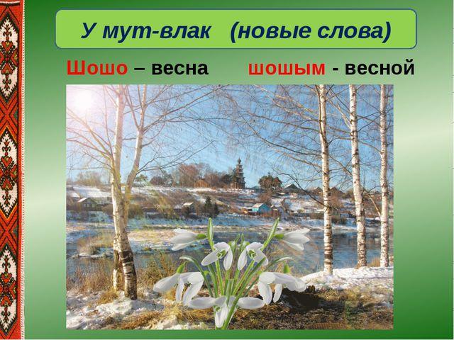 У мут-влак (новые слова) Шошо – весна шошым - весной