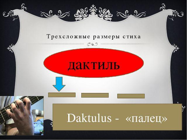 Трехсложные размеры стиха Дактиль дактиль Daktulus - «палец»