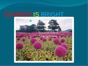 SUMMER IS BRIGHT,