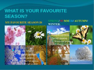 WHAT IS YOUR FAVOURITE SEASON? MY FAVOURITE SEASON IS SPRING/ SUMMER/ AUTUMN/