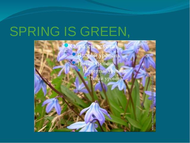 SPRING IS GREEN,