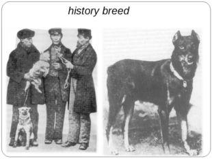 history breed