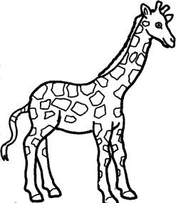 http://cdn.imagestocks.in/Coloring/giraffe/giraffe-coloring-pages-2.jpg