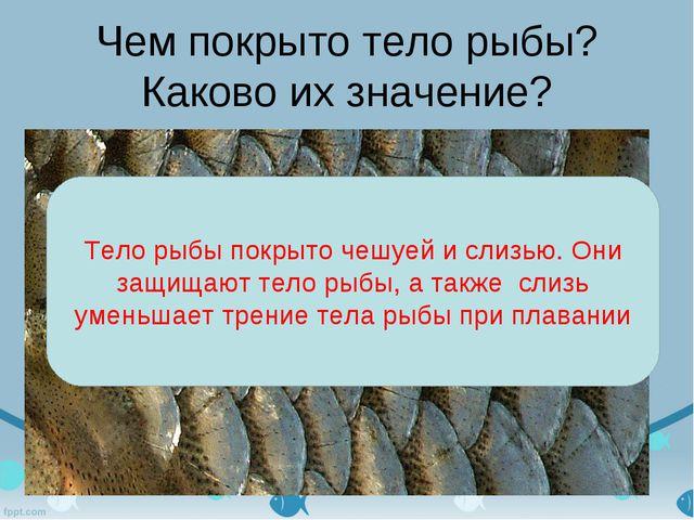 Чем покрыто тело рыбы? Каково их значение? Тело рыбы покрыто чешуей и слизью....