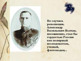 Не случись революции, Александр Васильевич Колчак, несомненно, стал бы гордос