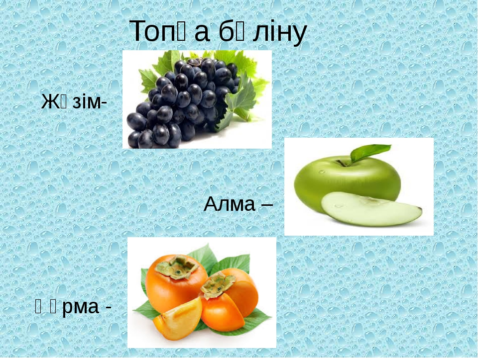 Топқа бөліну Жүзім- Алма – Құрма -
