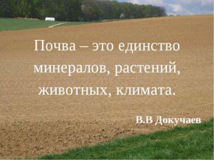 Почва – это единство минералов, растений, животных, климата. В.В Докучаев