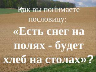 Как вы понимаете пословицу: «Есть снег на полях - будет хлеб настолах»?