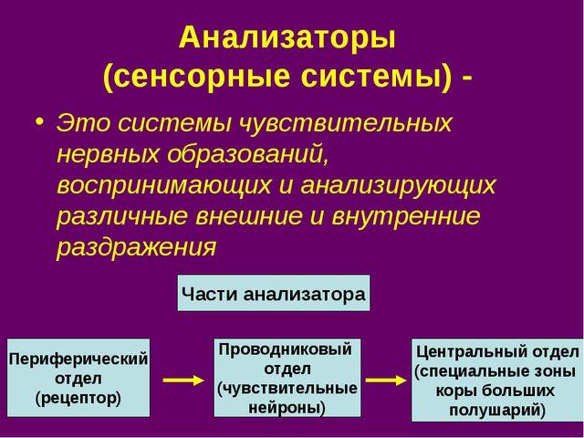 Анализаторы (сенсорные системы) - Это системы чувствительных нервных образова...