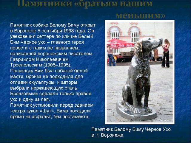 Памятник собаке Белому Биму открыт в Воронеже 5 сентября 1998 года. Он увеков...