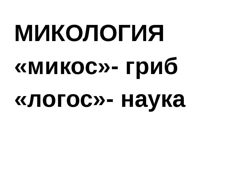 МИКОЛОГИЯ «микос»- гриб «логос»- наука