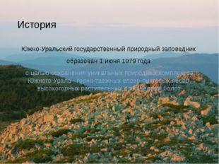 История Южно-Уральский государственный природный заповедник образован 1 июня