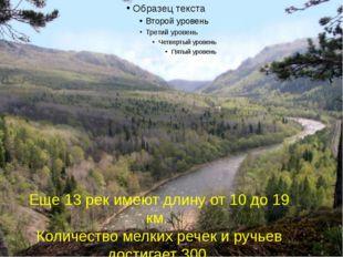 Еще 13 рек имеют длину от 10 до 19 км. Количество мелких речек и ручьев дост