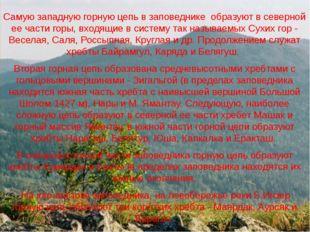 Самую западную горную цепь в заповеднике образуют в северной ее части горы,