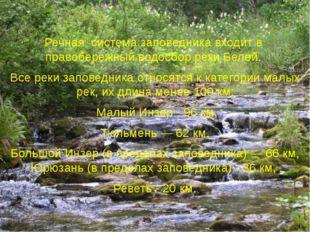Речная система заповедника входит в правобережный водосбор реки Белой. Все
