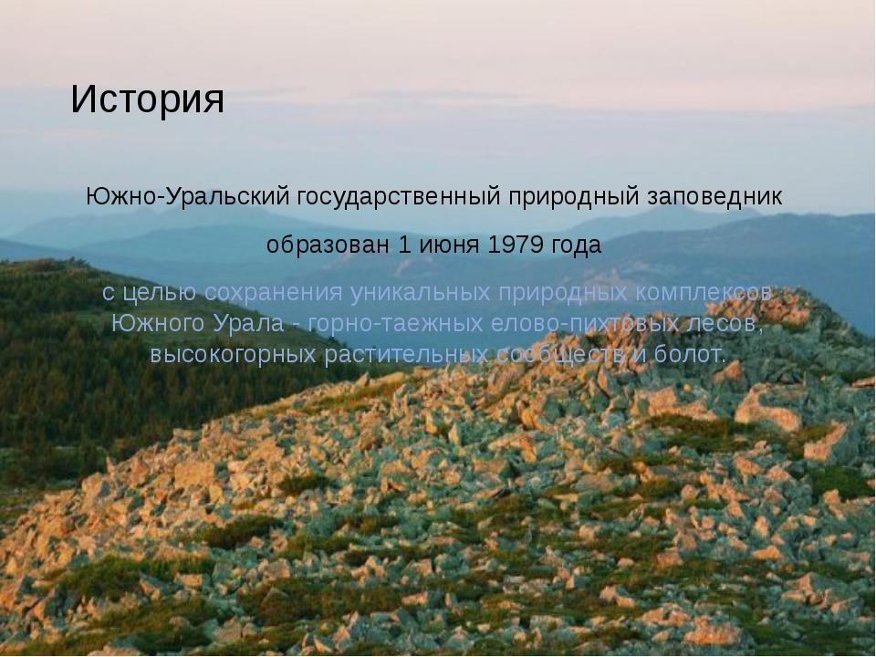 История Южно-Уральский государственный природный заповедник образован 1 июня...