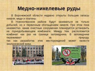 В Воронежской области недавно открыты большие запасы никеля, меди и платины.