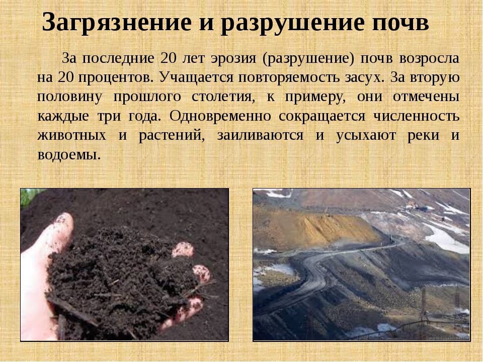За последние 20 лет эрозия (разрушение) почв возросла на 20 процентов. Учаща...