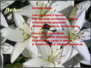 Лилии Белая лилия. Она невинна и чиста Как признак истинного вкуса, И непороч