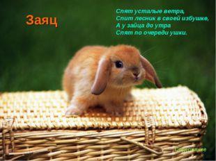 Заяц Спят усталые ветра, Спит лесник в своей избушке, А у зайца до утра Спят