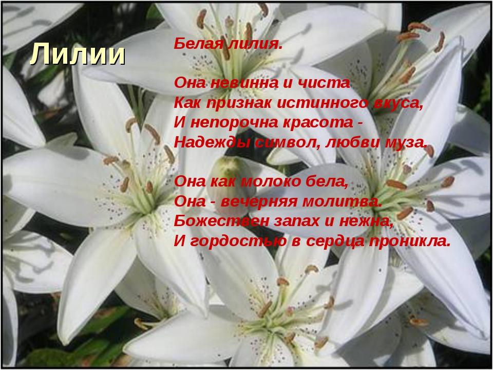 Лилии Белая лилия. Она невинна и чиста Как признак истинного вкуса, И непороч...