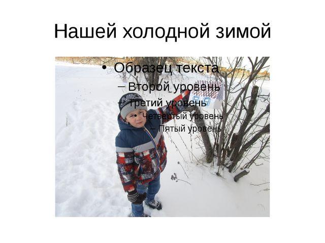Нашей холодной зимой