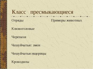 Класс пресмыкающиеся ОтрядыПримеры животных Клювоголовые  Черепахи Чешуйча