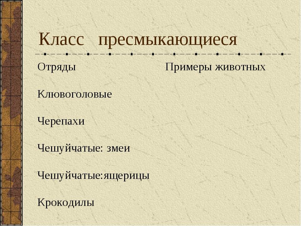 Класс пресмыкающиеся ОтрядыПримеры животных Клювоголовые  Черепахи Чешуйча...
