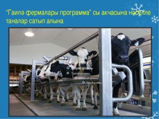 """""""Гаилә фермалары программа"""" сы акчасына нәселле таналар сатып алына"""