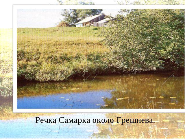 Речка Самарка около Грешнева.