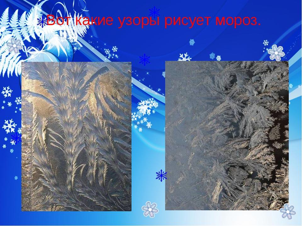 Вот какие узоры рисует мороз.