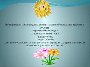 На территории Нижегородской области находятся уникальные природные объекты: -
