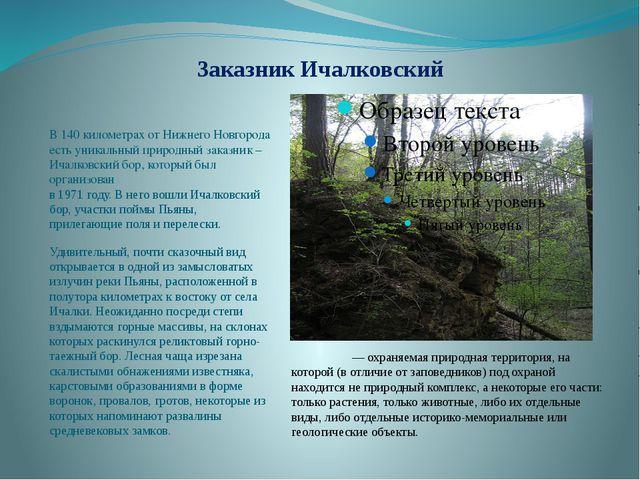Заказник Ичалковский В 140 километрах от Нижнего Новгорода есть уникальный пр...