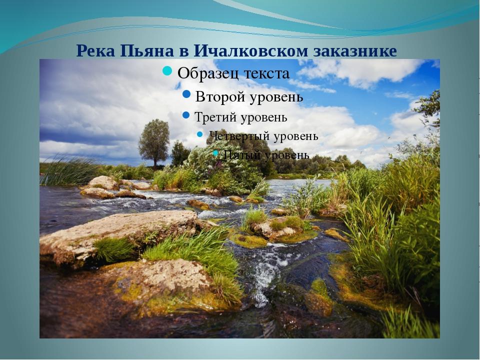 Река Пьяна в Ичалковском заказнике