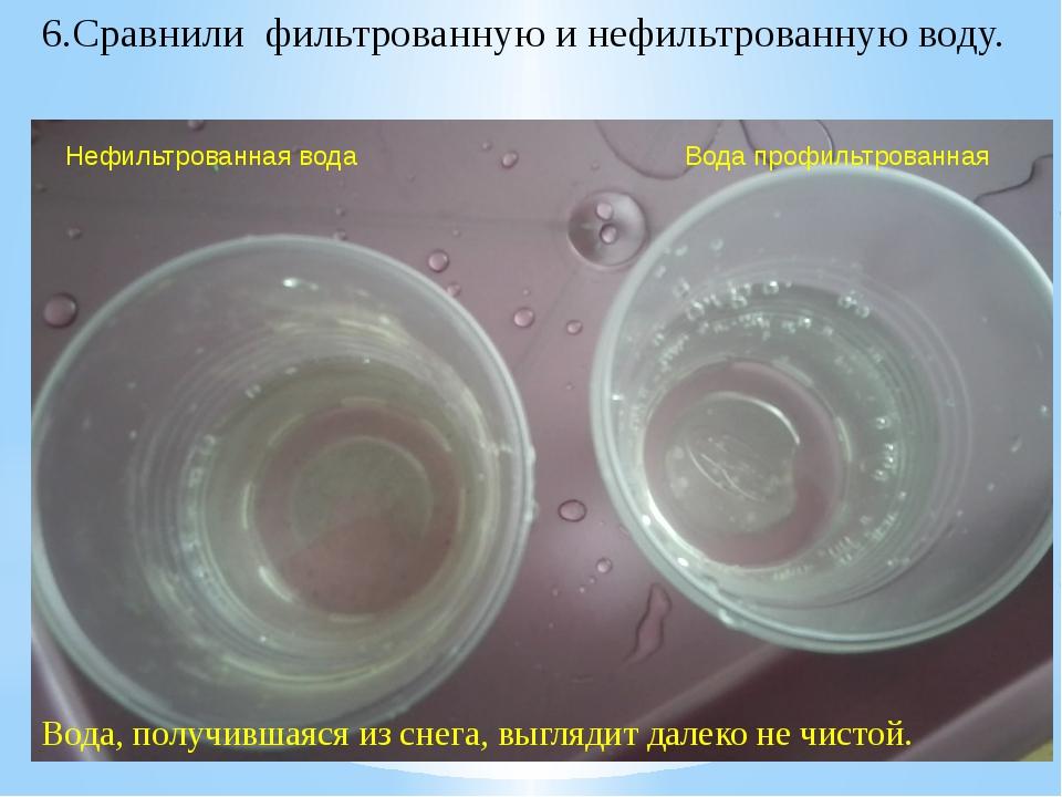 Нефильтрованная вода Вода профильтрованная 6.Сравнили фильтрованную и нефиль...