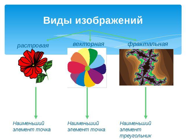 растровая Виды изображений векторная фрактальная Наименьший элемент точка Наи...