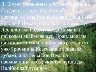 Д. Бічэль успамінае: «Ад Загасцінца на поўдзень — лес. Прабегчы хвілін дзесяц
